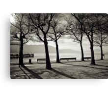 Laketrees in Winter Canvas Print