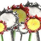 """*""""DeeZies""""* by Darlene Lankford Honeycutt"""