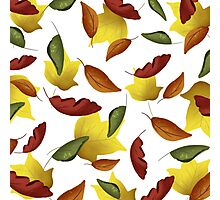 Falling Watercolor Leaves Photographic Print