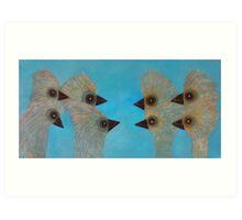 Emu Gathering 11 Art Print