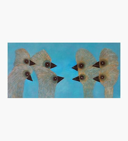 Emu Gathering 11 Photographic Print
