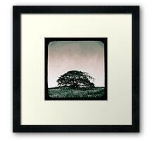 Standing Strong Framed Print