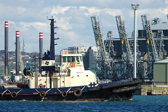Newcastle Harbour - Wato Tug Boat by Phil Woodman