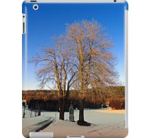 Cross with guardian trees in winter wonderland | landscape photography iPad Case/Skin