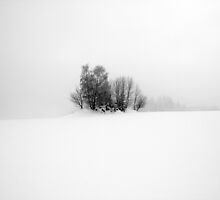 Shades of Grey by Philipp Kern