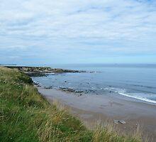 Beach Cliff Walk by Mark Willson