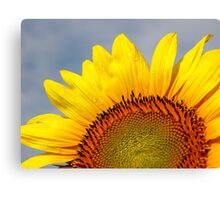 Bring a Little Sunshine Canvas Print