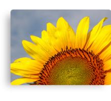 Bring a Little Sunshine Canvas Print