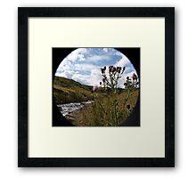 Country Walks Framed Print