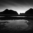 Black Tidal by Peter Denniston