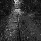 A Narrow Gauge by Peter Denniston