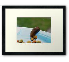 My Pet Slug Framed Print