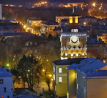 Night Vinnitsa 11 by fine