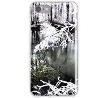 The Frozen Pond iPhone Case/Skin