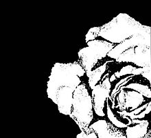 A Rose is A Rose by Terry Ganey