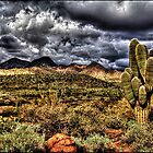 Saguaro, Red Rock and Hills by Roger Passman