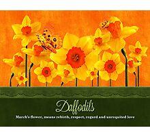 March Birth Flower - Calendar Image Photographic Print
