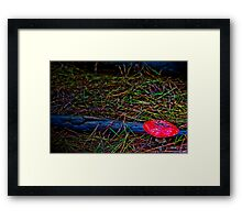 Anger in the Forest Framed Print