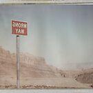 Wrong Way Nevada (8x10 Polaroid) by Steven Godfrey