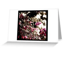 Thicket Greeting Card