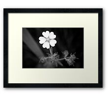 Lots of Love Framed Print