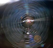 Spider Web Abstract by SteveOhlsen