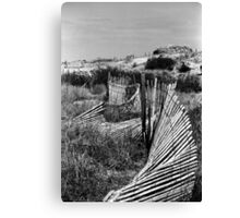 Wondering Dune Fence Canvas Print