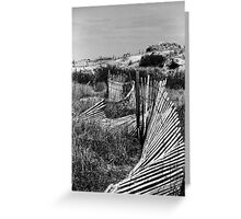 Wondering Dune Fence Greeting Card