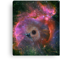 To Explore Far Horizons Canvas Print