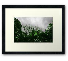 Radio active trees Framed Print