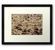 Martian Landscape...Down On The Farm Framed Print