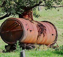 Supervising the Old Steam Boiler by Bev Woodman