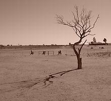 Cameron Corner, Outback Australia by Chilidog
