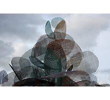 Wire Sculpture. Adelaide University. Photographic Print