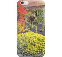 The Cesar Manrique Cactus Garden.................Lanzarote iPhone Case/Skin