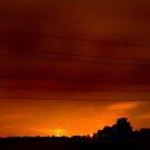 Summer Lightening by Trevor Patterson