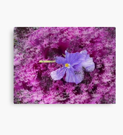 The Kale & The Pansy Canvas Print