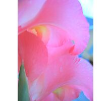 Soft Pastels Photographic Print