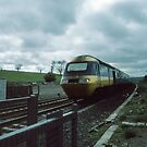 High Speed Train approaching Holy Isle Crossing Northumbria England 198405290001 by Fred Mitchell