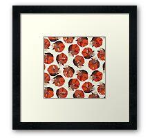 curled fox polka ivory Framed Print