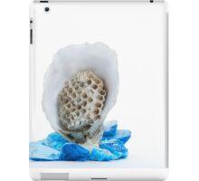 Hooded iPad Case/Skin