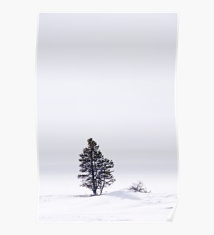 Lonely Landscape Poster