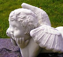 Daydreaming Cherub by Marie Sharp