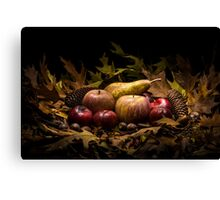 Autumnal still life composition with apples, pear and prunes Canvas Print