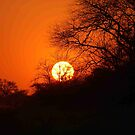 "MY AFRICAN SUNSET ""TODAY"" by Magriet Meintjes"