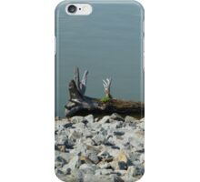 Driftwood On The River iPhone Case/Skin