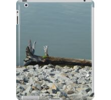 Driftwood On The River iPad Case/Skin