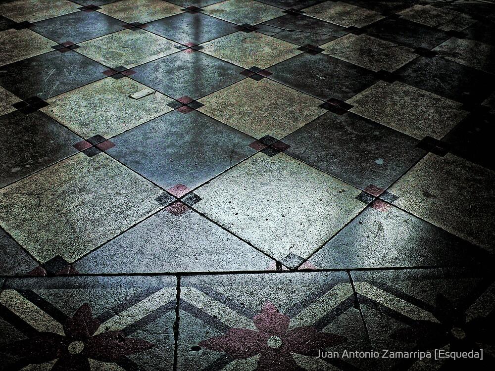 (P1130527 _XnView) by Juan Antonio Zamarripa