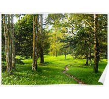 natural scene at Junjung Poster