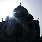 Taj Mahal by Coralie Alison
